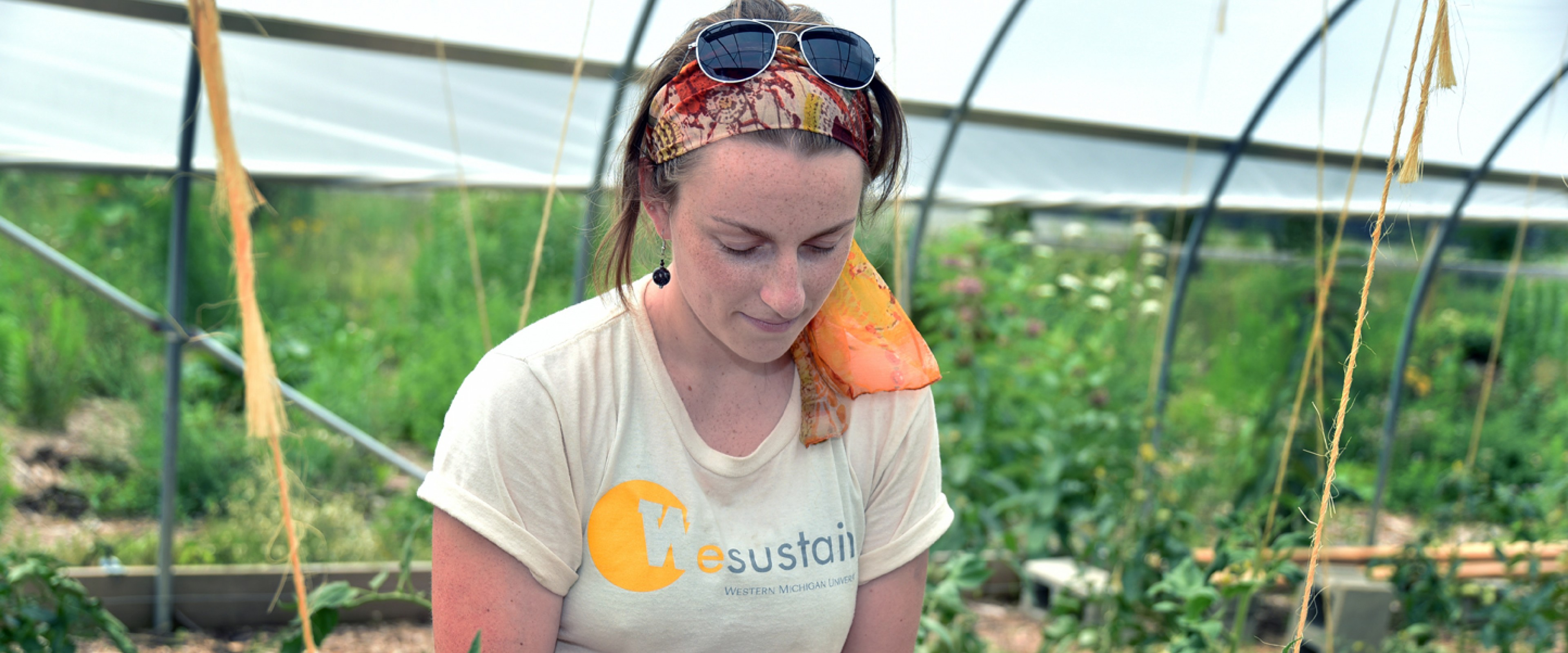 A WMU student works with plants in the campus greenhouse