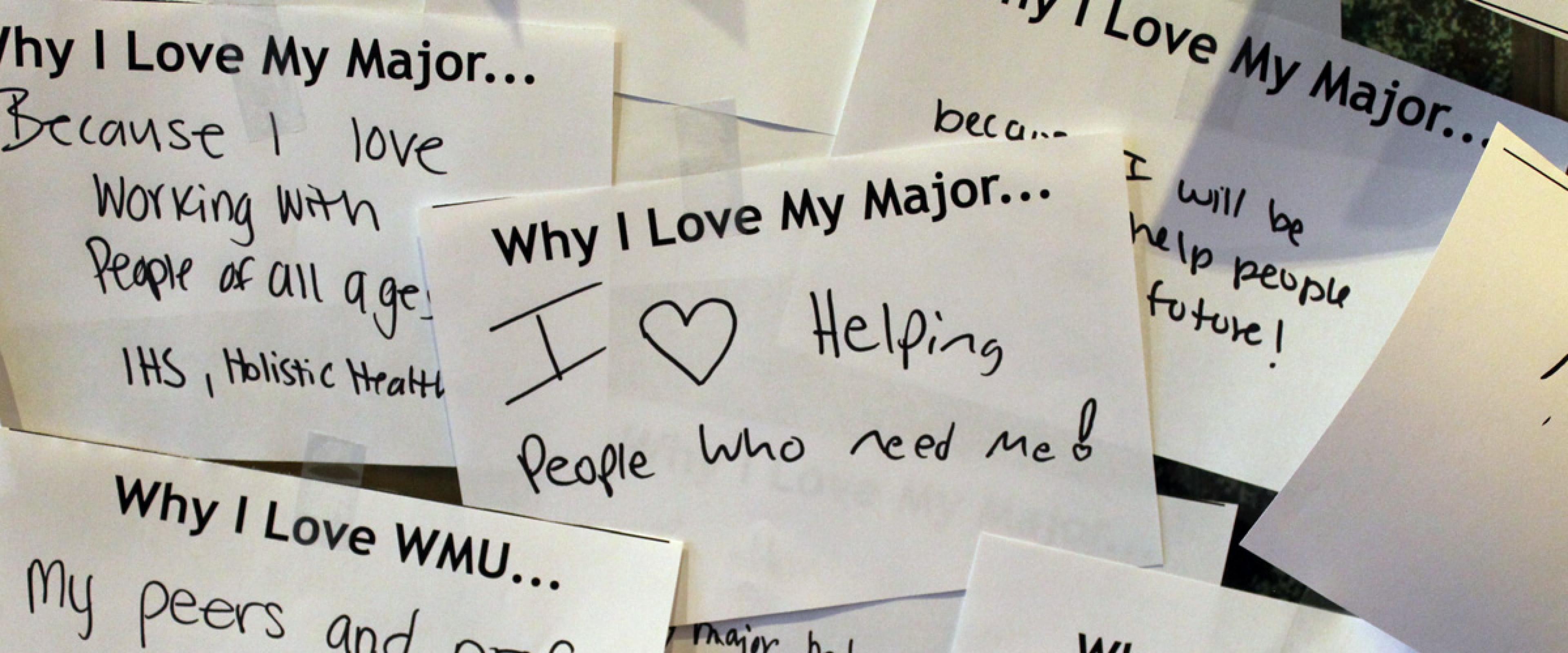 why I love my major