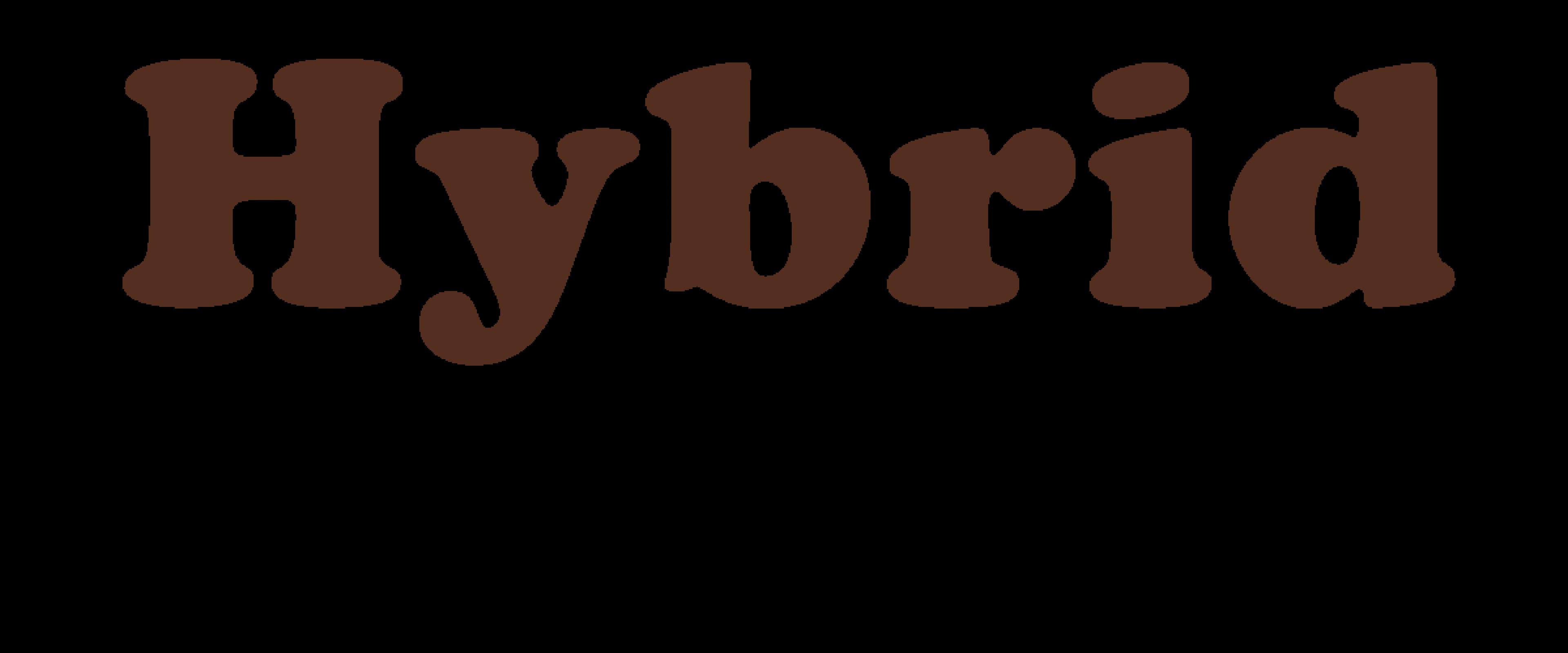 hybrid format
