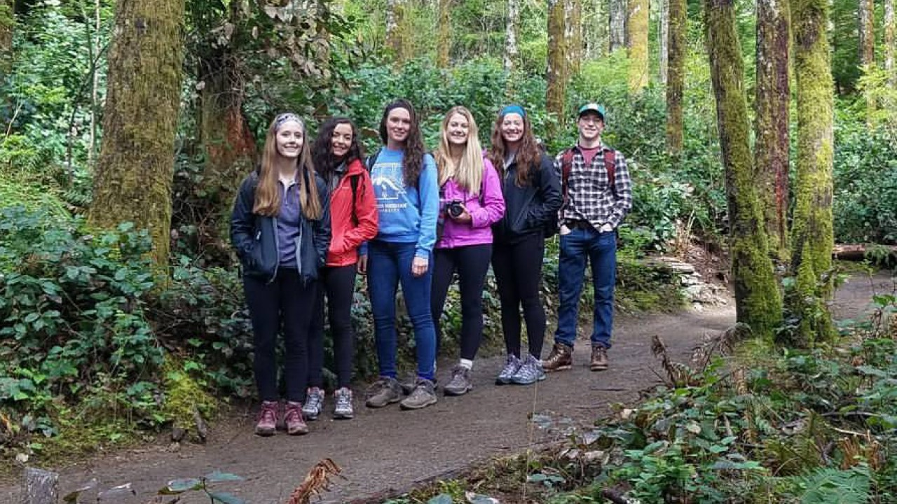 A line of students in a forest in the Pacific Northwest.