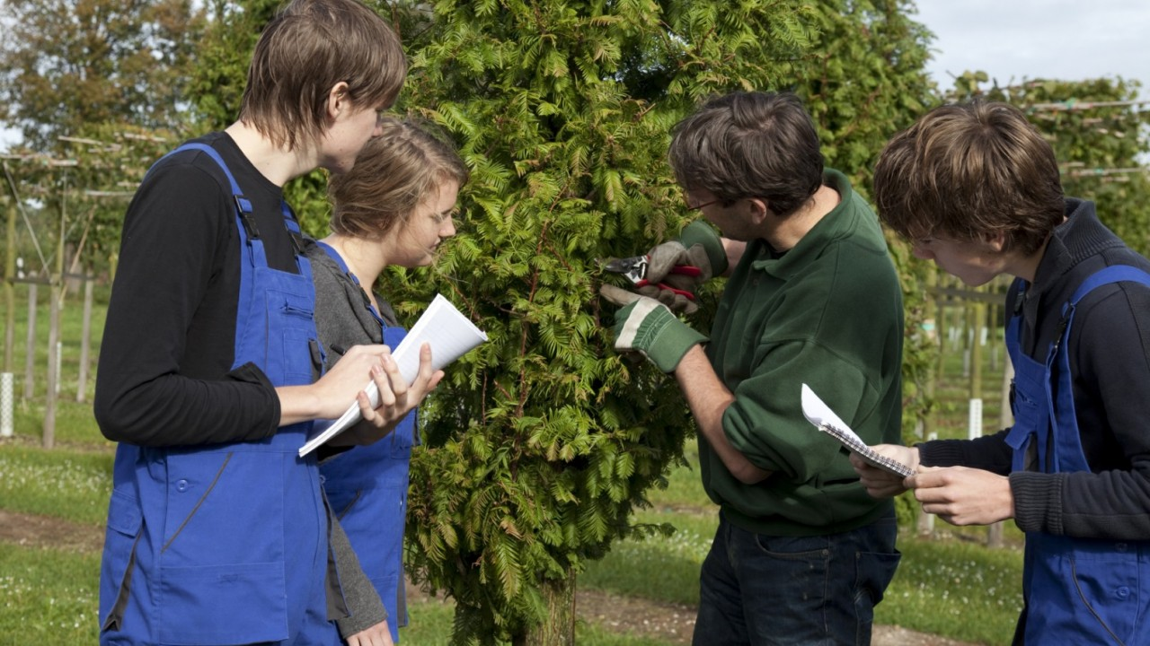 Photo of students watching landscape worker.