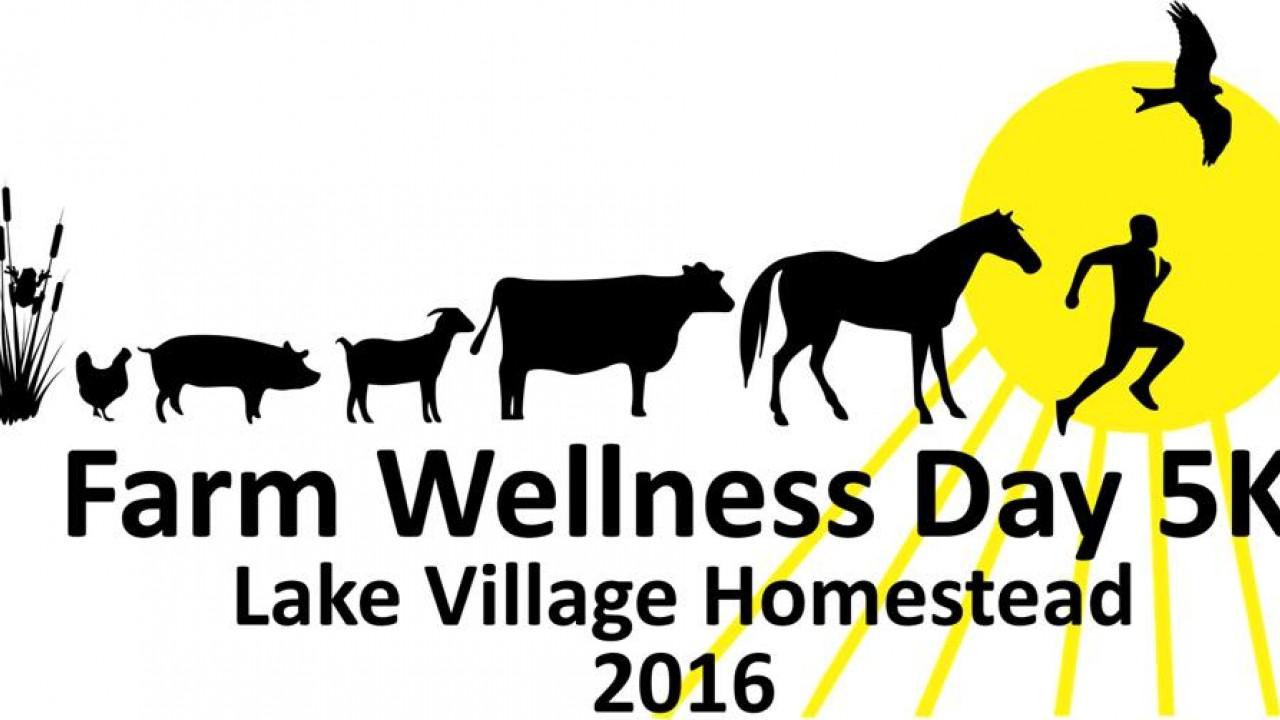 Lake Village 5K 2016