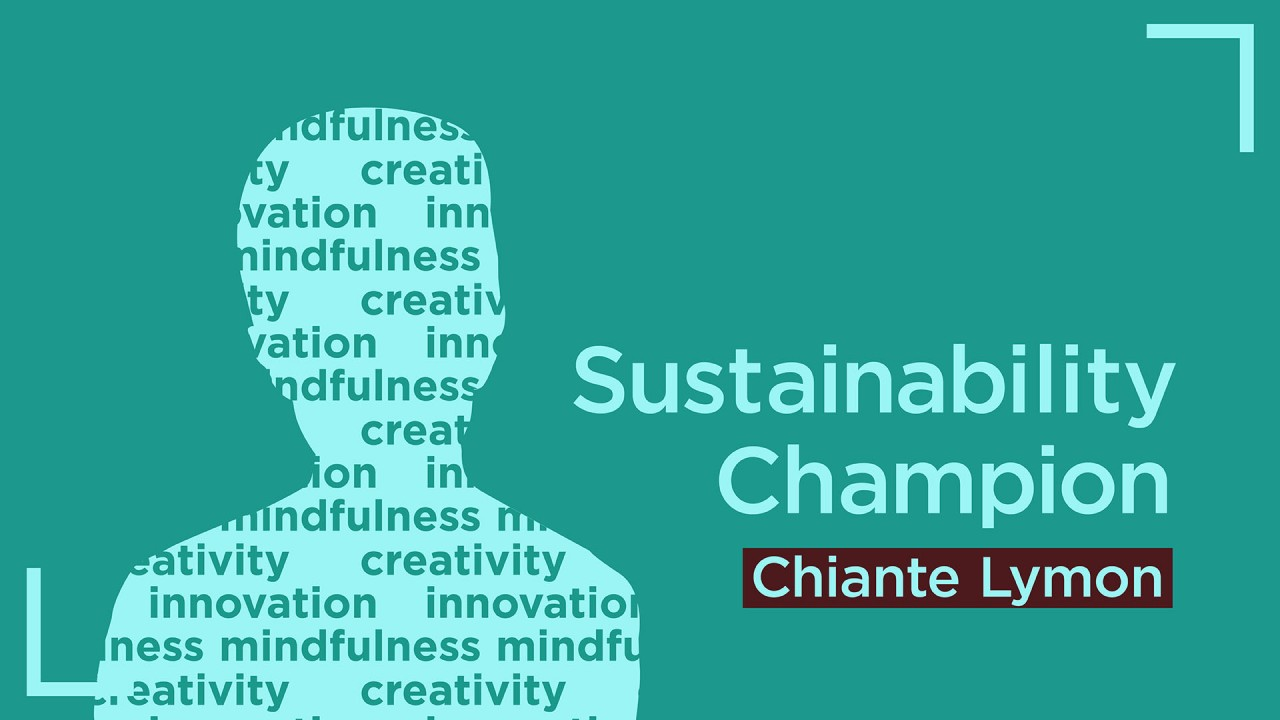 """Teal background with a light blue silhouette of a the chest and head of a person filled with the words """"creativity"""", """"mindfulness"""" and """"innovation""""."""