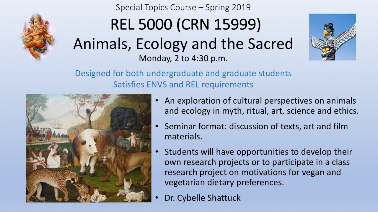 Special topics course-spring 2019; REL 5000, CRN 15999- Animals, Ecology and the Sacred, Mondays 2 to 4:30 p.m., designed for both undergraduate and graduate stduents, satifies ENVS and REL requirements; an exploration of cultural perspectives on animals and ecology in myth, ritual, art, science and ethics; seminar format: discussion of texts, art and film materials; students can develop their own research projects or participate in a class research project on motivations for vegan diets