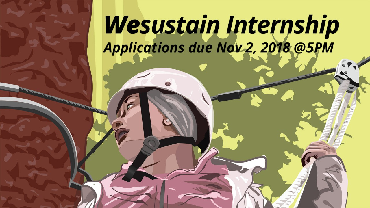 """slide saying """"wesustain internship applications due November 2, 2018 at 5 PM with a woman on a high ropes course as the graphic"""
