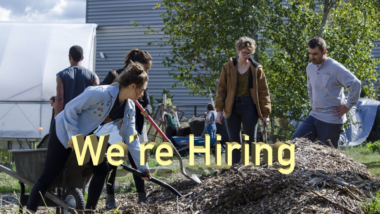 "Text says, ""we're hiring"" background image is a photo of 6 students digging dirt with shovels at the Gibbs House site"