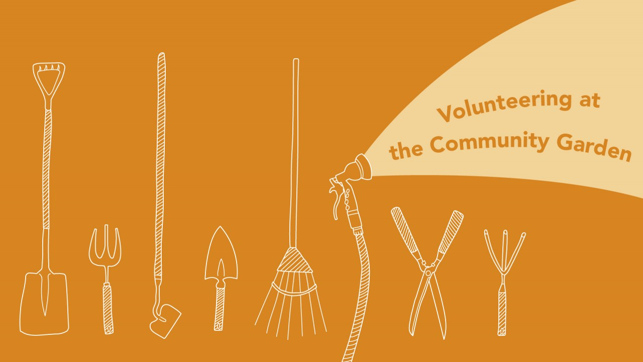 "Text says, ""Volunteering at the Community Garden."" The background color is orange and there are 8 hand drawn tools in a row ( shovel, hoe, clippers, hose)."