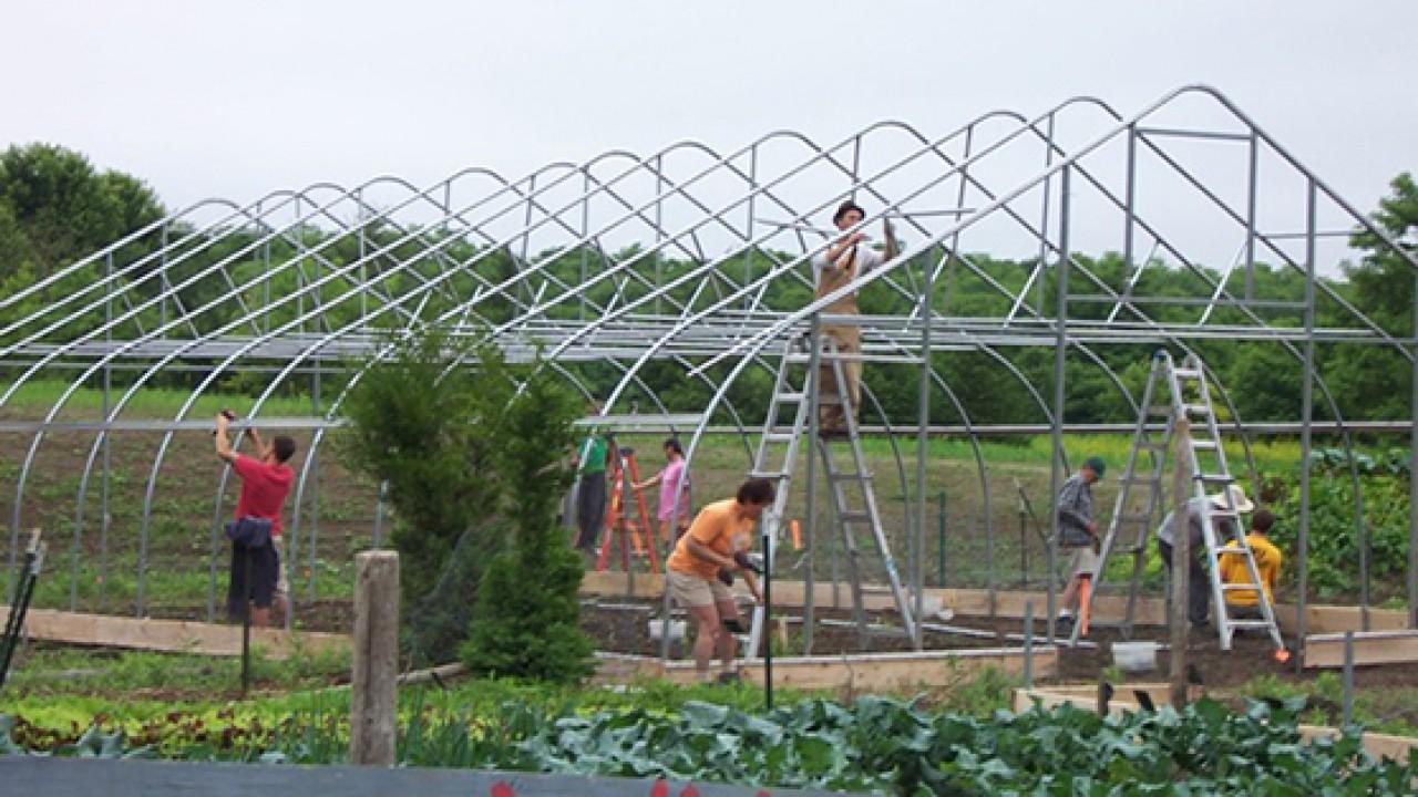 Hoop House build