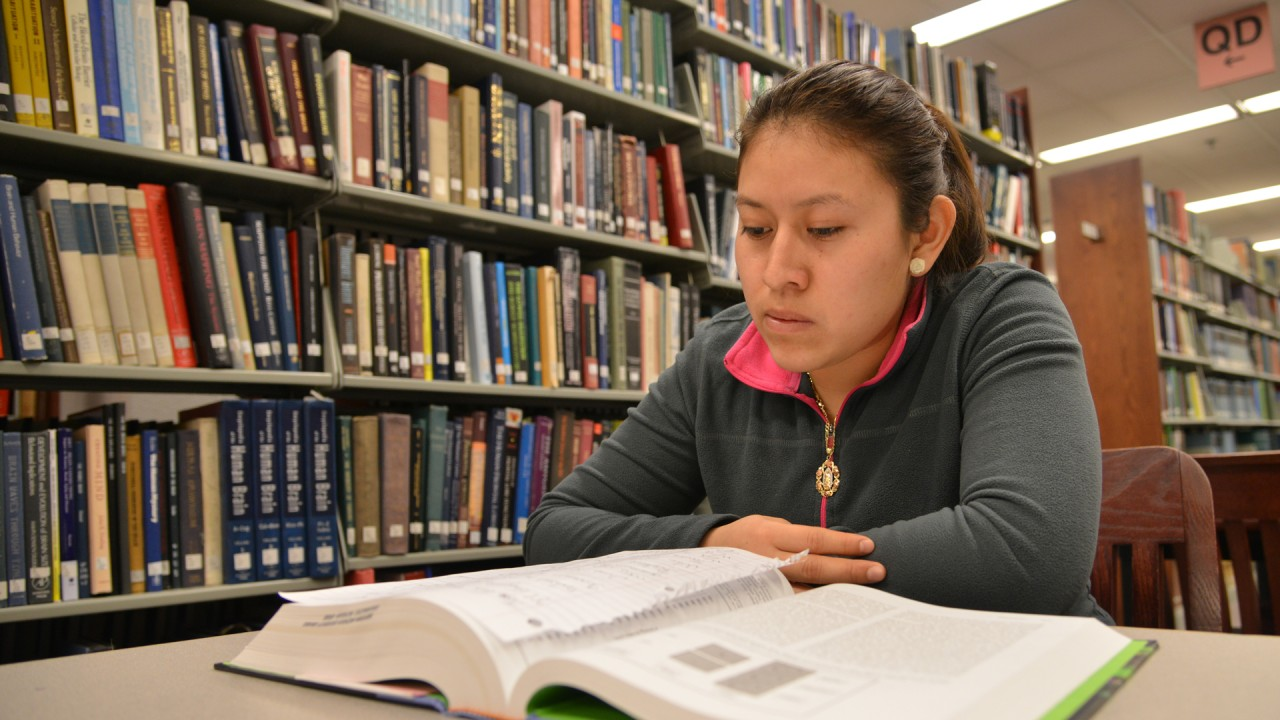 A student reading a book in the library.