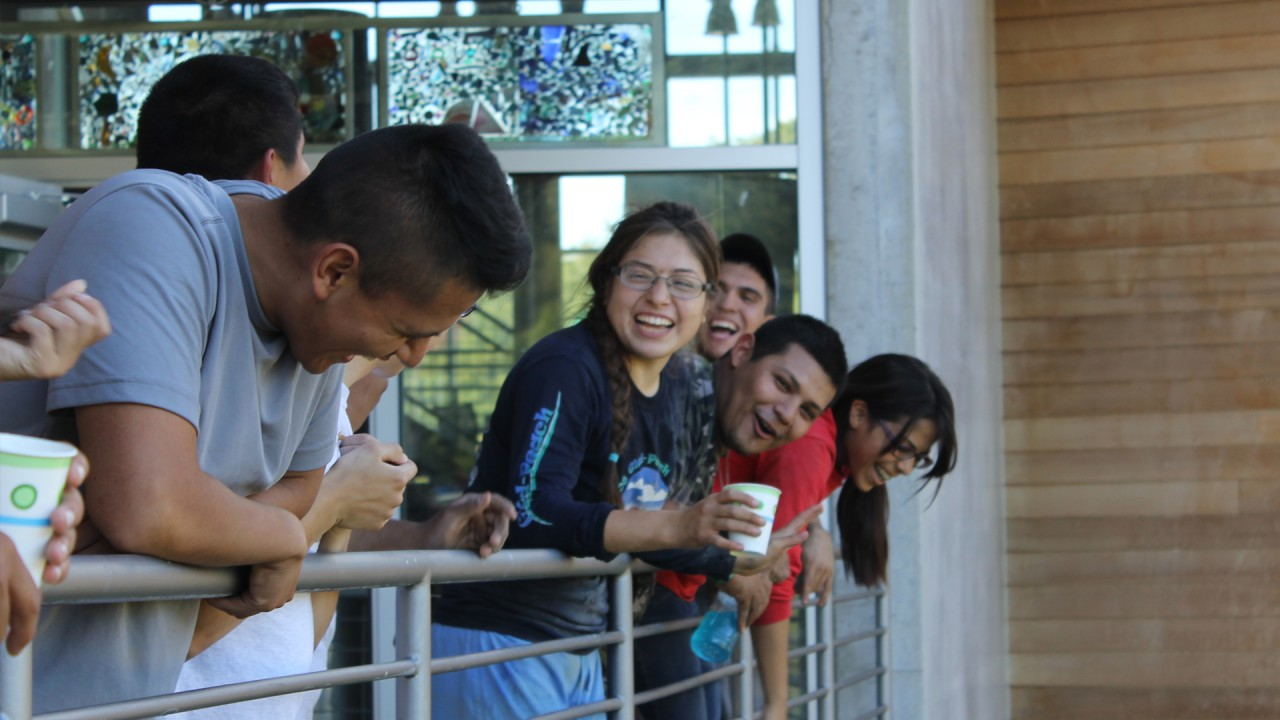 A group of students laughing over a ledge.