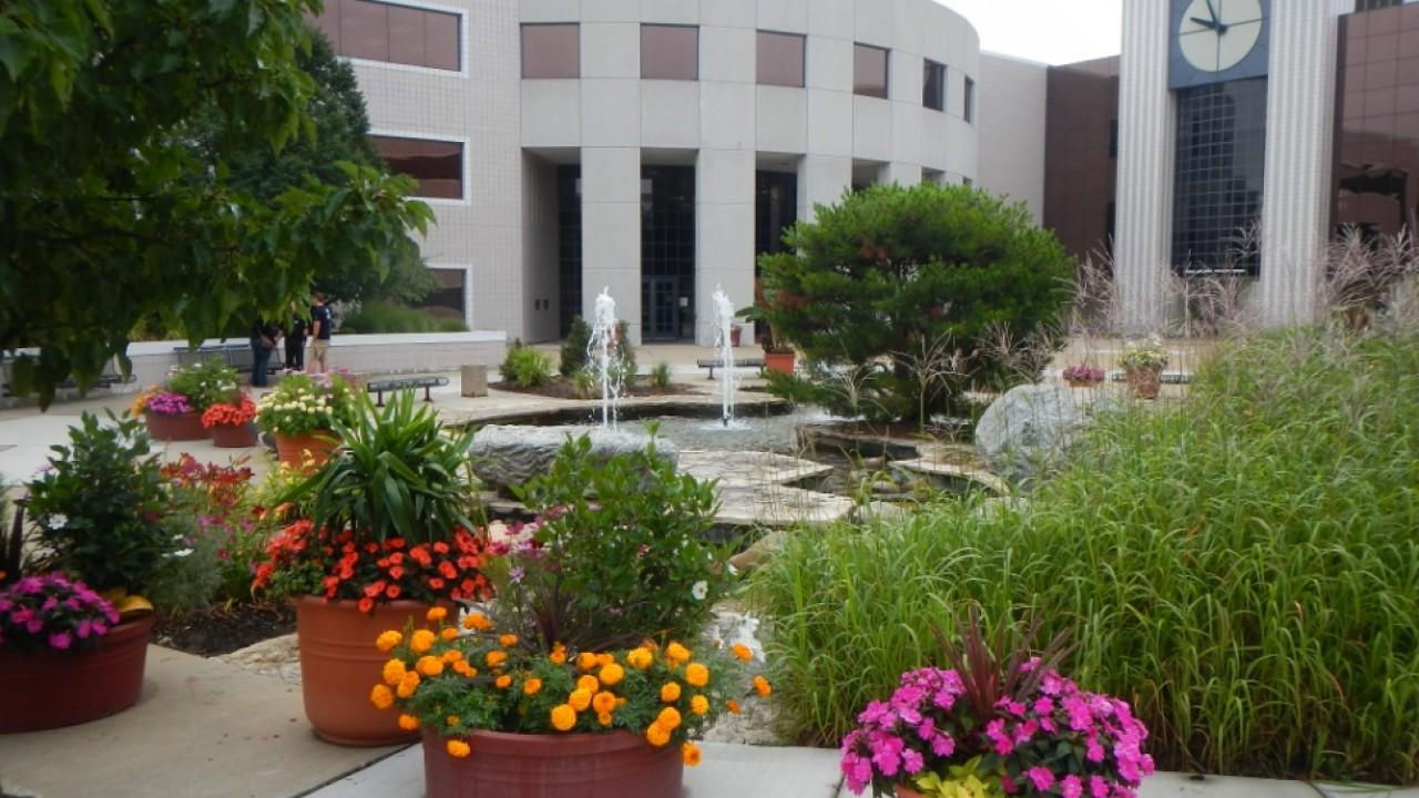 Landscaping around Board of Trustees fountain near Waldo Library