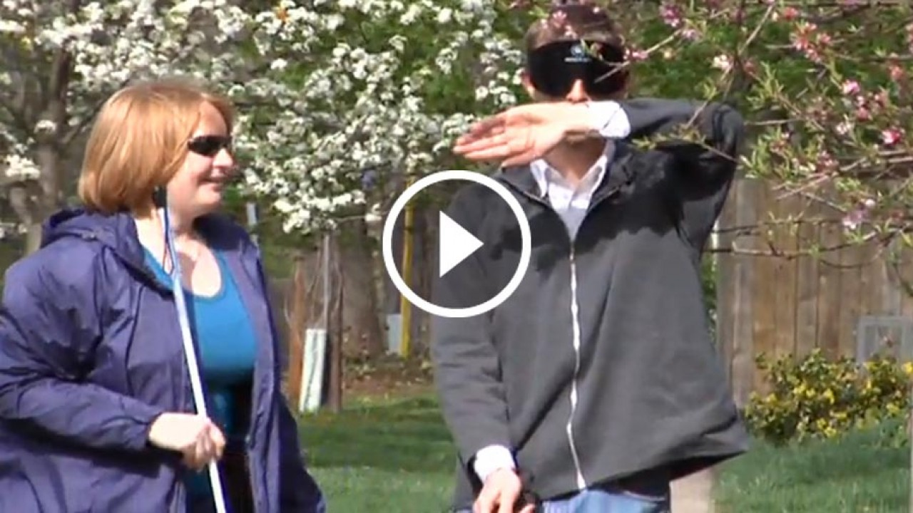 Video still from blindness and low vision informational video.