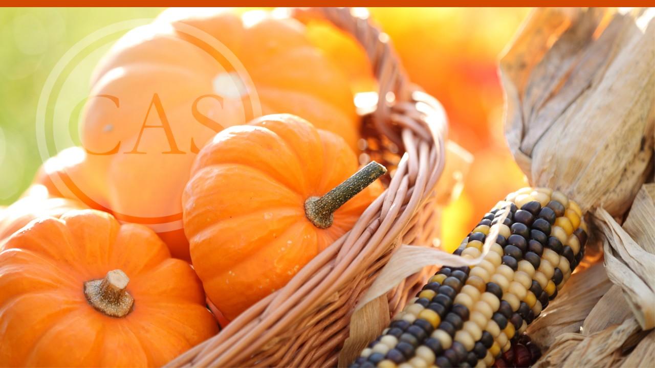 Thanksgiving slide