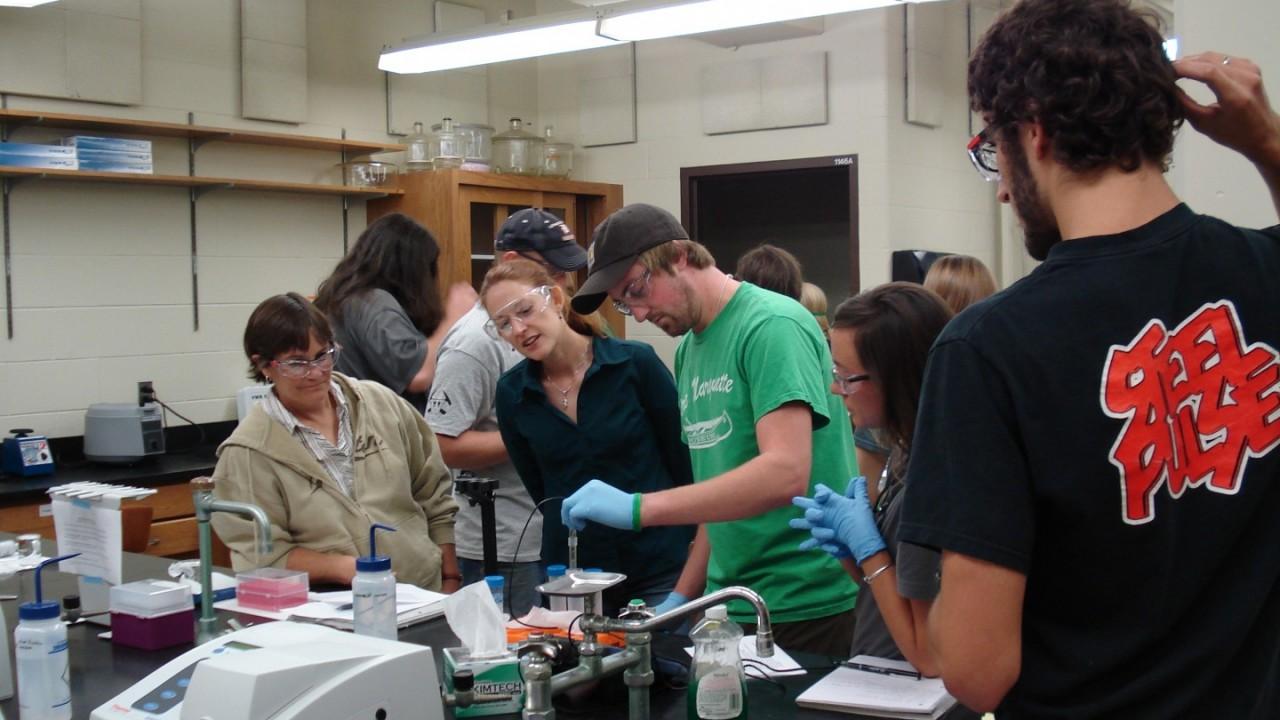 Students in a Geochemistry class