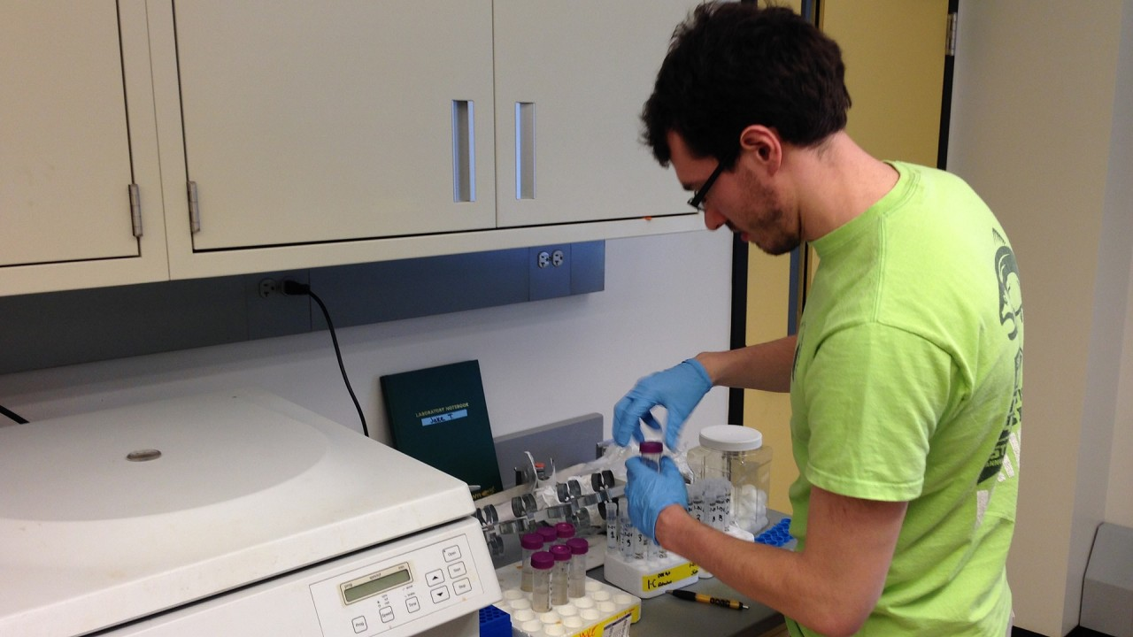 A student performs an expirement in the lab.