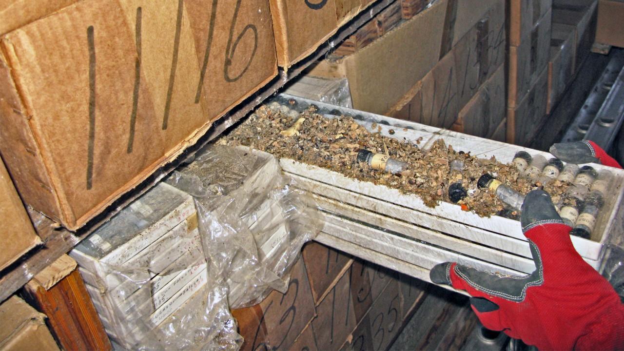 Damaged cuttings boxes