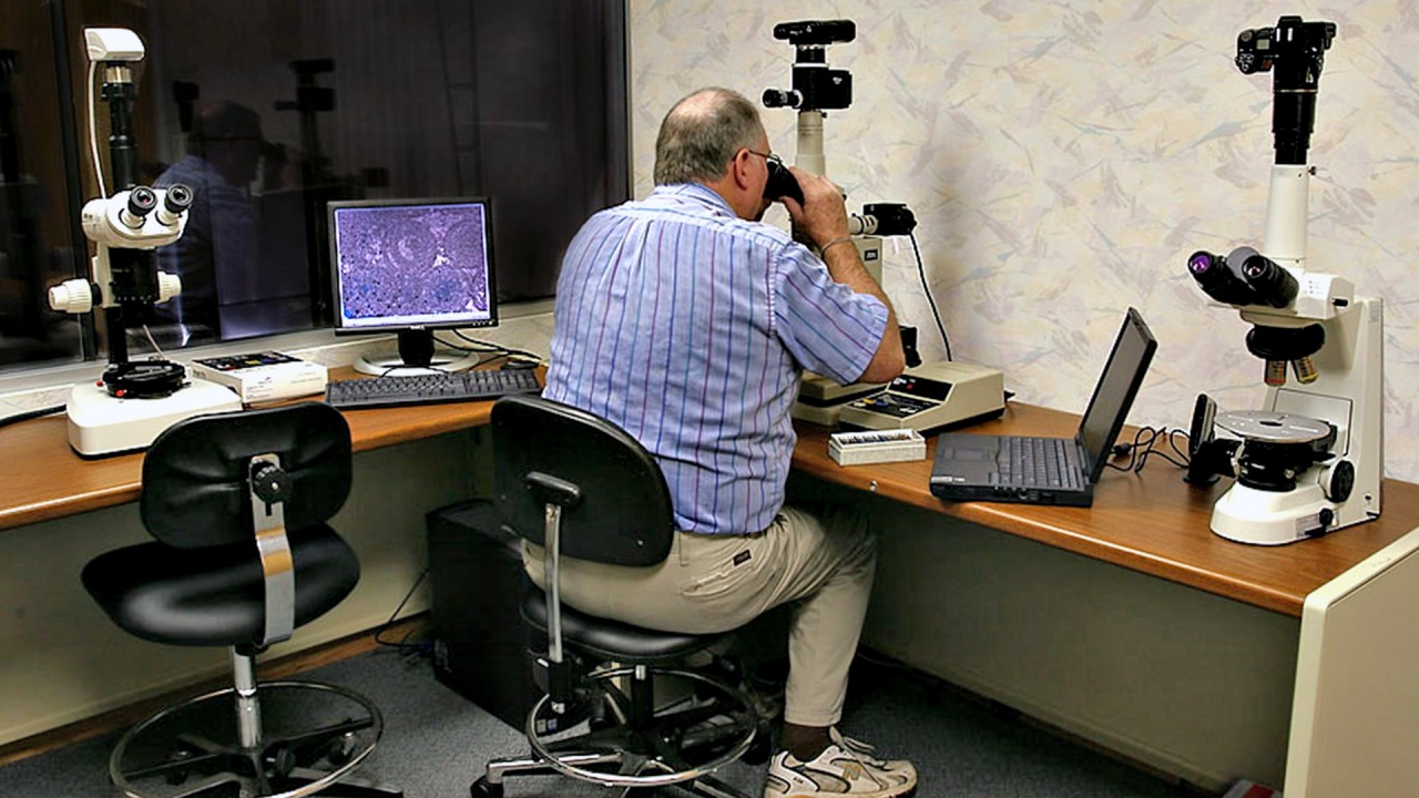MGRRE director examines specimen under microscope