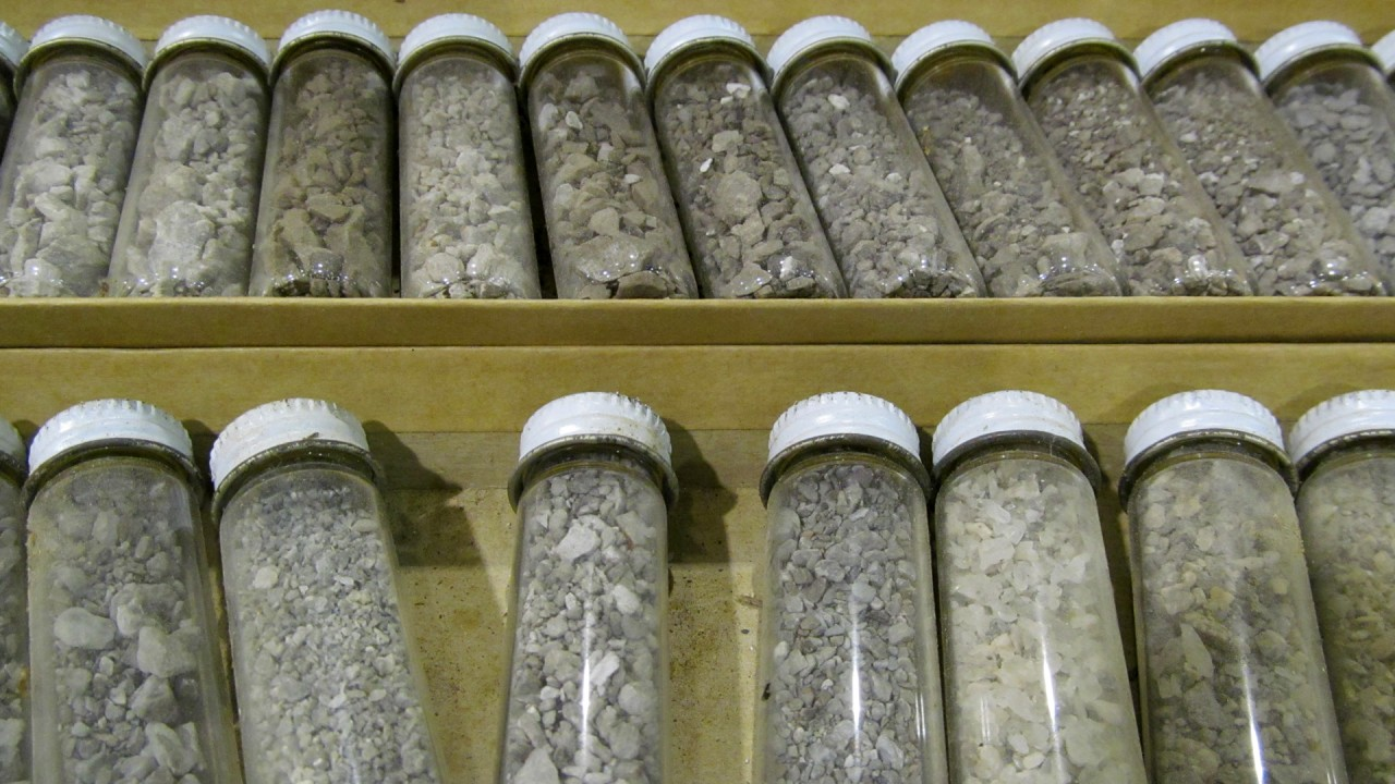 Cuttings in glass vials