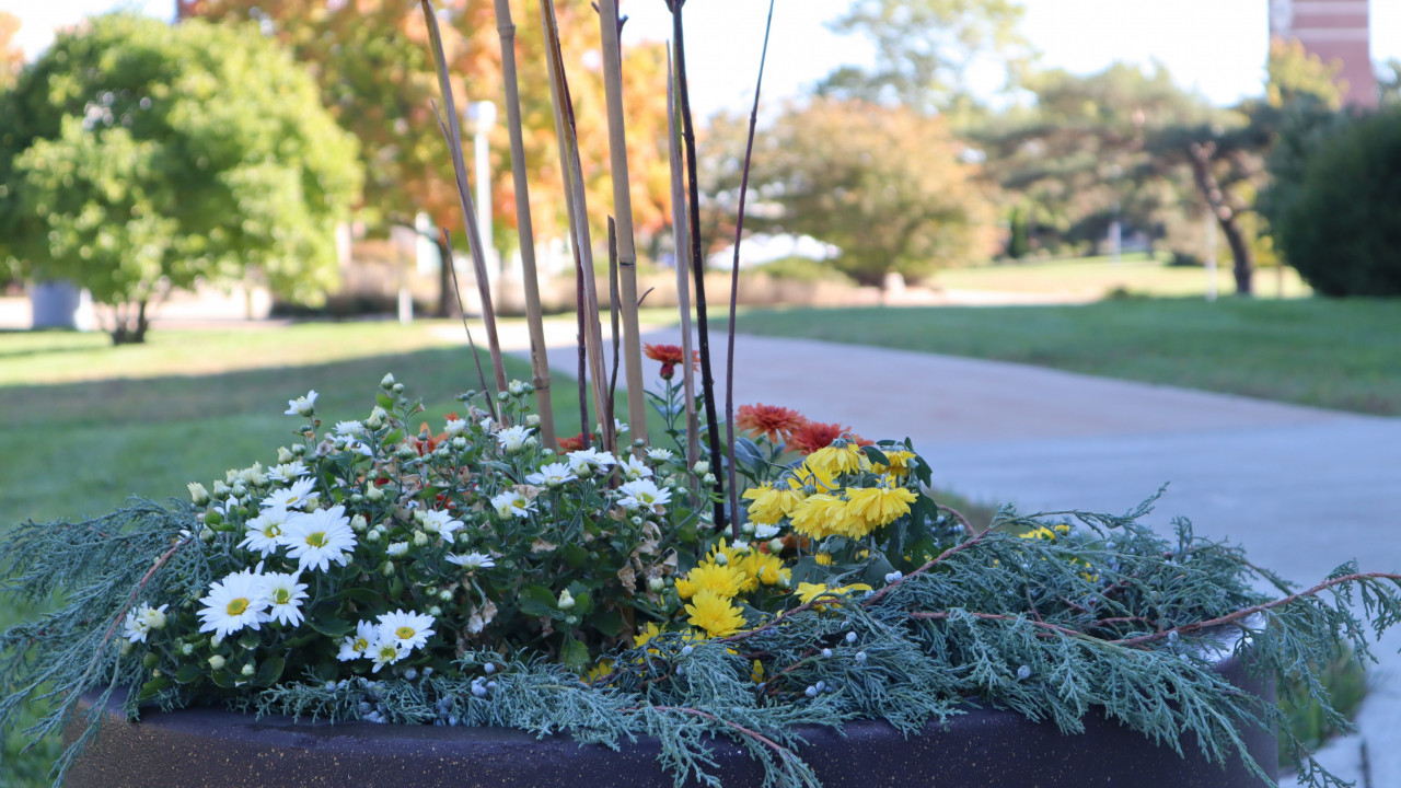 A planter is filled with flowers and foliage, with the campus blurred in the background