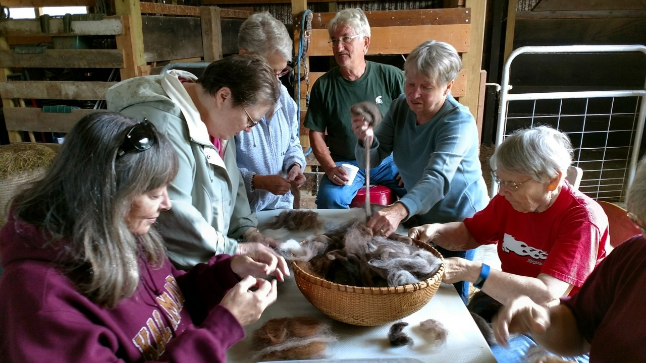 OLLI travelers gathered around a basket of Alpaca yarn