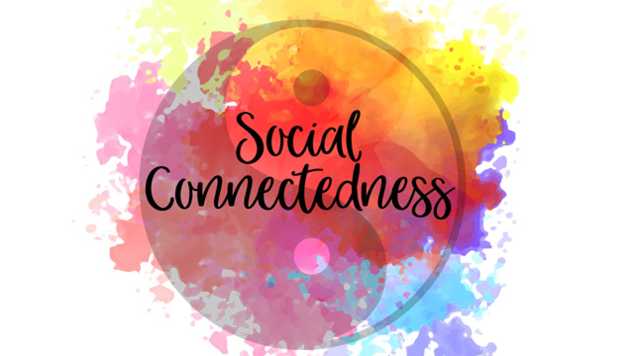 Social Connectedness Lunch & Learn graphic with a yin and yang symbol with colorful watercolor splashes behind it.