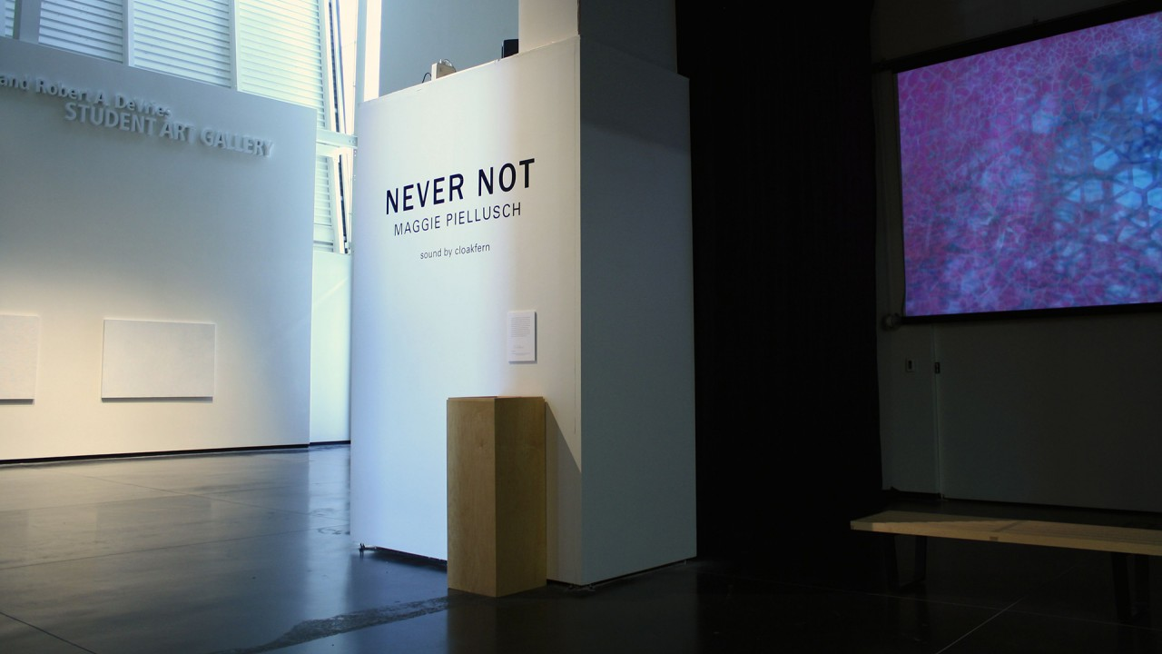 "outside the ""never not"" exhibition"