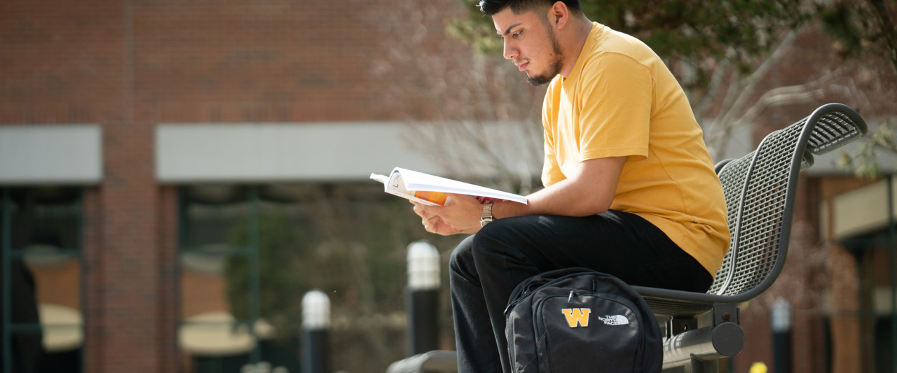 A young student reading, sits outside of the Haworth College of Business.