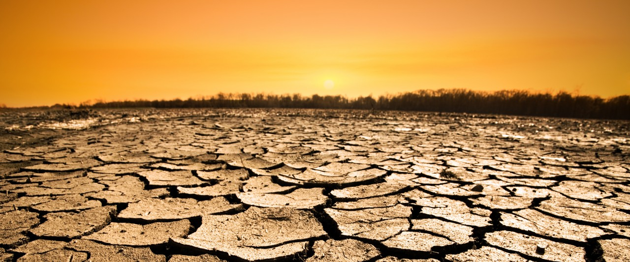 Photo of cracked earth in a drought.