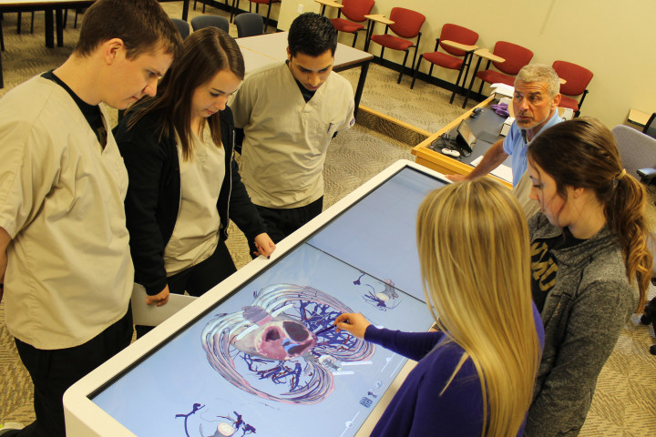 students at the anatomage table