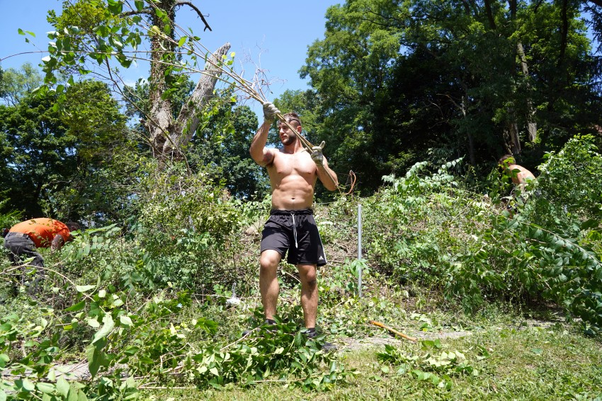 A shirtless man carries some branches he is clearing from a lot.