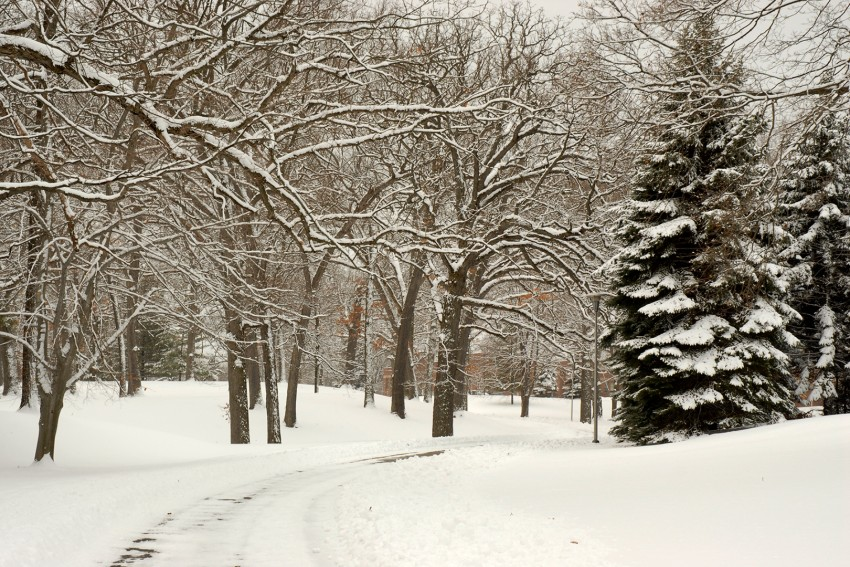 Photo of snowy day on campus.