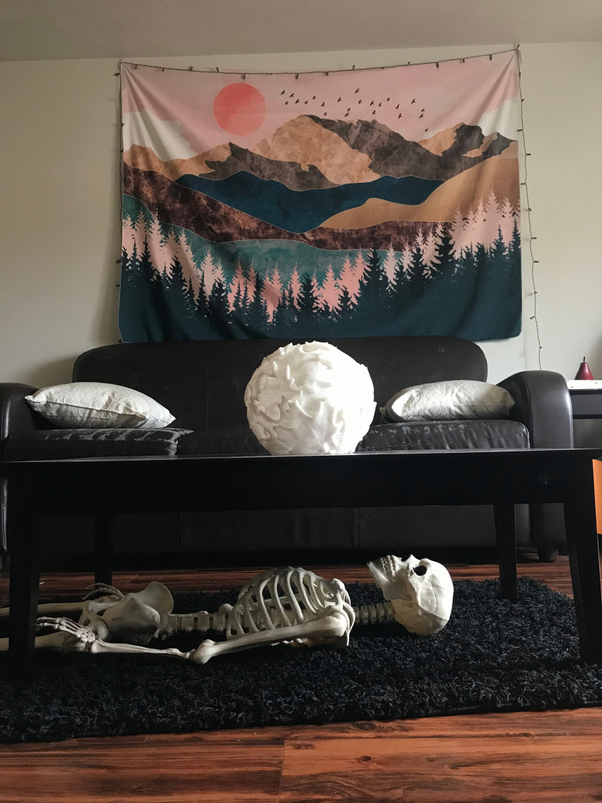 A skeleton laying on a run in a living room.