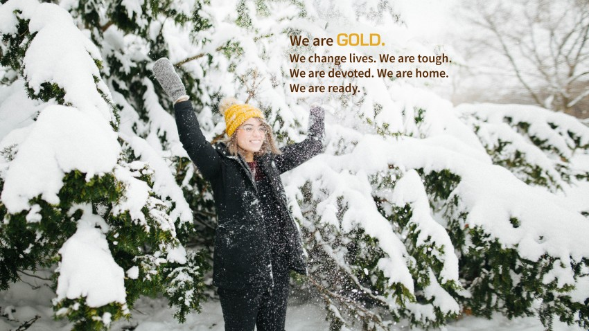 WMU, we are gold, we change lives, we are tough, we are devoted, we are home, we are ready.