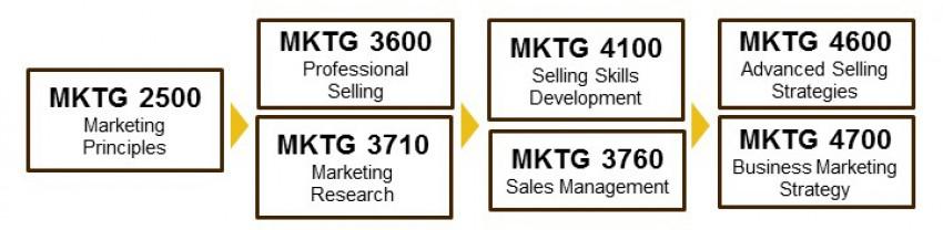 sales program