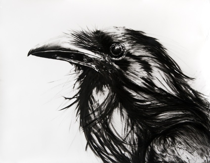 "Karen Bondarchuk. Speak, Memory VI. Charcoal on Rives BFK, 33"" x 42"", 2009"