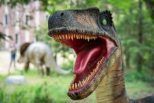 Utahraptor in the dinosaur park behind the honors college.