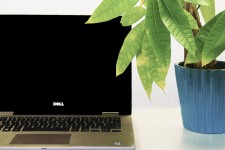 Photo of laptop next to plant