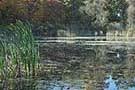 Asylum Lake photos