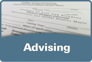 Advising for global and international studies
